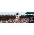 Shorts de Baseball / Softball