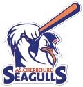 Seagulls de Cherbourg